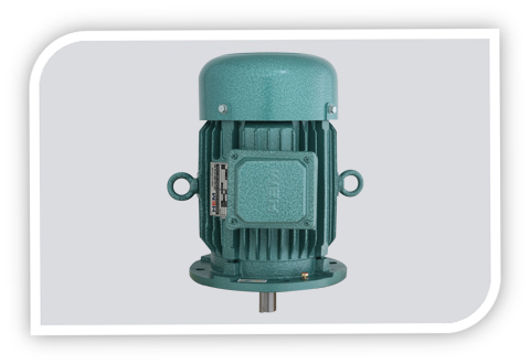3 PHASE SQUIRREL CAGE INDUCTION MOTOR